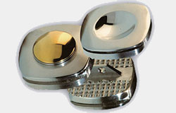 Intervertebral Discs