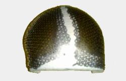 Reconstrucciones en malla de titanio